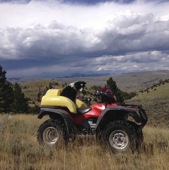 Four Wheeler Weed Spraying | Montana Weed Control | Terra Nova, LLC | Bozeman, Dillon, Ennis, Twin Bridges, Butte, Belgrade